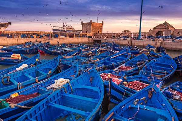 excursion a essaouira