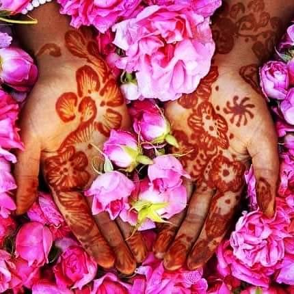 valle de rosas Marruecos
